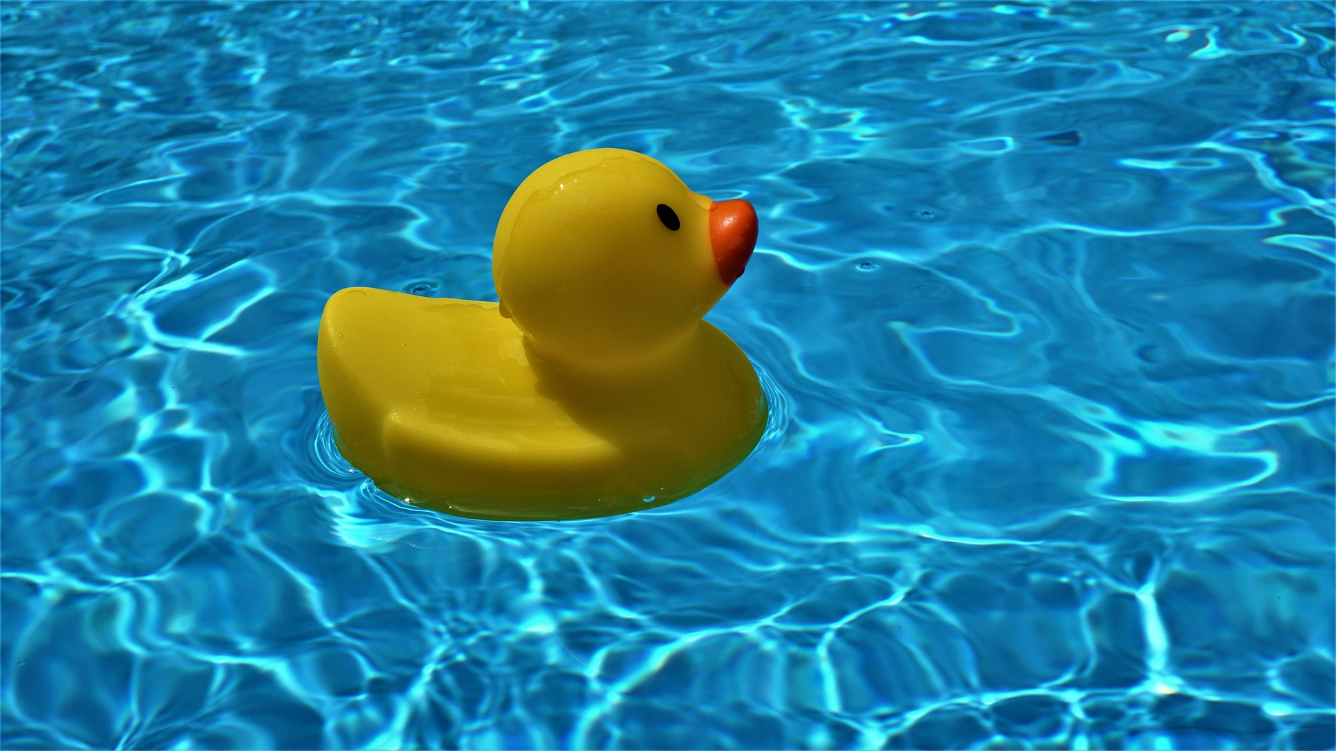 piscine gonfiabili da giardino